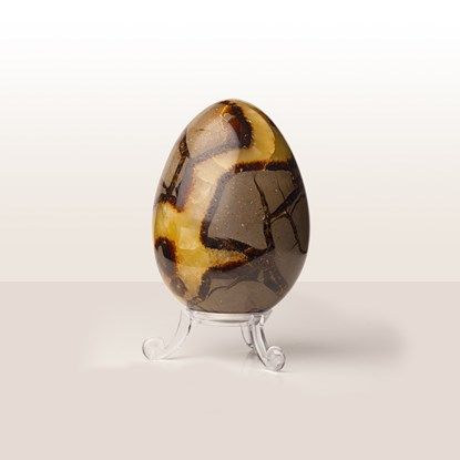 Picture of Septarian Egg