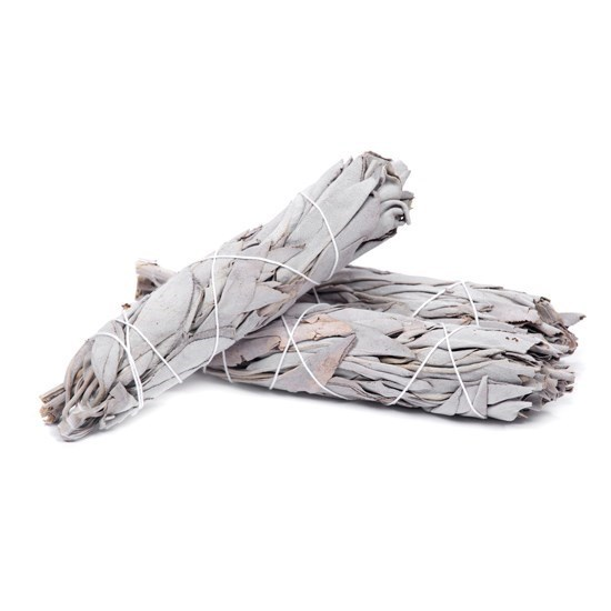 Picture of White Sage (Smudge Sticks)
